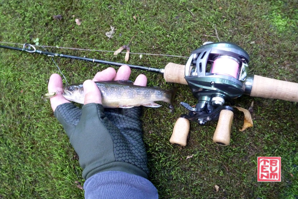 Daiwa Alphas Air Stream Custom Left, a Tenryu rod and a brook trout on a moss covered rock.