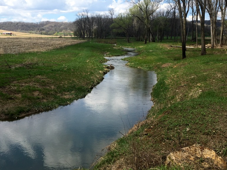 Trout stream in the Wisconsin Driftless.