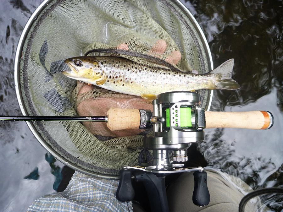 Angler holding 8