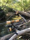 Tenryu RZ39LL and tight stream.