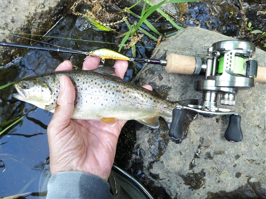 Angler holding brown trout alongside Spectra RZS51LL