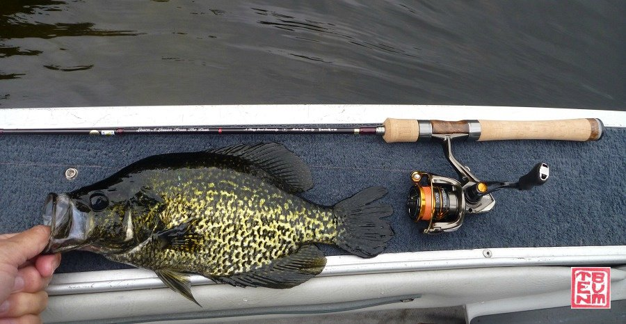 Tenryu Rayz Alter RZA61L-T and black crappie on boat deck